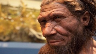 CORONAVIRUS: Genes neandertales ayudan a pacientes graves, revela estudio